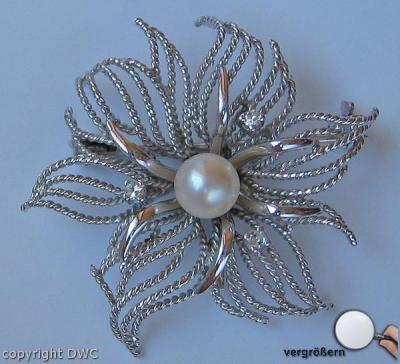 Angemessen Brillantbrosche Mit Diamanten Diamonds Brooch In Aus 14 Kt 585 Gold Echtschmuck